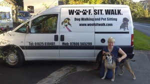 dog walking pet sitting van